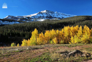 Meditation Practice Resembles an Autumn Morning