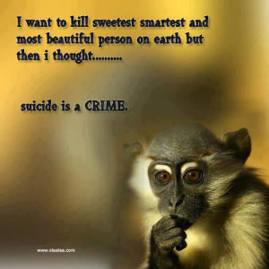 Suicide Is a Crime ~ Funny Quote