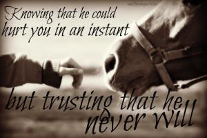 ... relationship.Horseback Riding, Rescue Horses Quotes, Quotes Horses