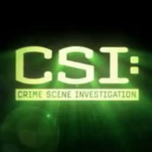CSI Las Vegas Quotes