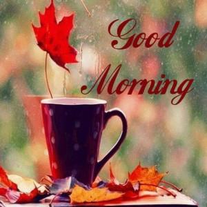 Good Morning and happy sla @Nena Todd @Doreenbobbys