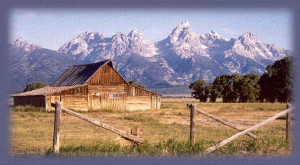 The Weathered Old Barn ~Stories-Poems~ Wanda's Country Home
