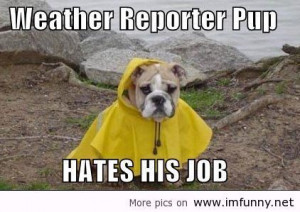 funny weather quotes cute