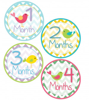 Happy 7 Months Baby Girl Quotes ~ Amazon.com: Wall Décor: Baby ...