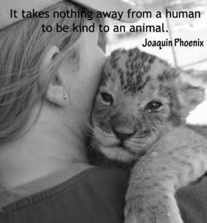 Joaquin Phoenix quote