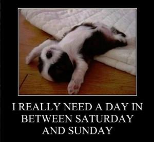 Funny memes – [I really need a day]