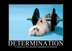 Categories Motivation , Motivational Monday
