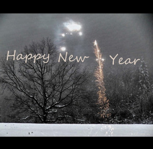 Funny quotes for New Year's http://www.flickr.com/photos/h-k-d ...