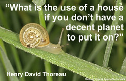 There is no single effort more radical in its potential for saving ...