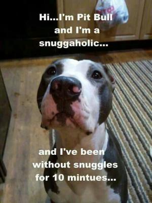 Love pitbulls ♥ ( This is so my Pitbull)