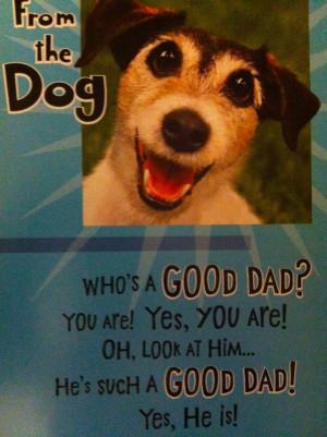 Pet Insurance Quotes Blog