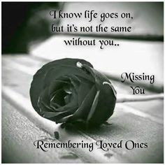 remembering loved one love quotes quote miss you sad rose in memory ...