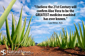 believe the 21st Century will confirm aloe vera to be the GREATEST ...