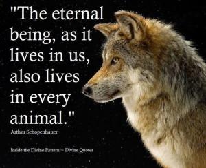 Animal - dog / wolf inspirational quote.
