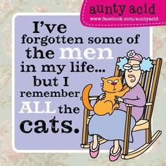 Cat quotes. #cat #humor #cats #funny #quotes #meme #lolcats #cute ...