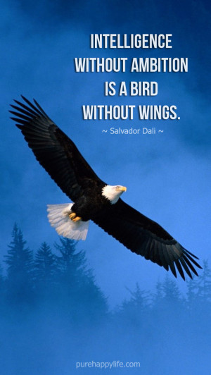 Inspirational Quote: Intelligence without ambition is a bird without ...