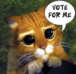 Please Vote For Me - A Shameless Plug