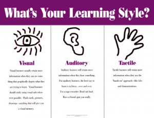 Which of the four adult learning styles are you?