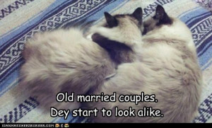 funny pictures of married couples