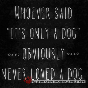 how sad to have never loved a dog