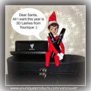 Dear Santa this Elf on the Shelf Wants 3D Lashes