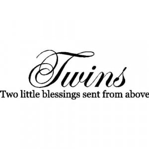 twins wall quotes words sayings removable vinyl lettering black