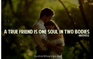 true friend is one soul in two bodies.