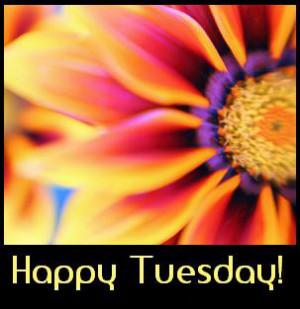 Terrific Tuesday! 1-10-2012