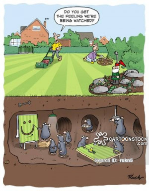 Mowing The Lawn cartoons, Mowing The Lawn cartoon, funny, Mowing The ...
