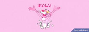 Cartoons The Pink Panther3 Facebook Covers