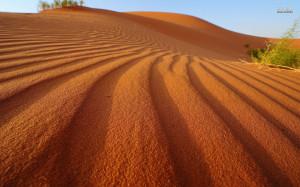 Sand dune wallpaper 1680x1050