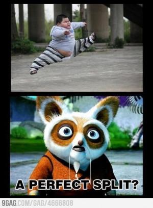 The real kung-fu panda