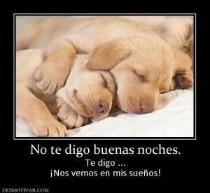 desmotivaciones buenas noches amor-64284_no_te_digo_buenas_noches.jpg