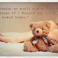 teddy bear quotes photo: teddy-1 teddy-1.jpg