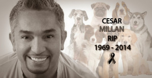 ... that 'dog whisperer' Cesar Millan had died of heart attack. Twitter