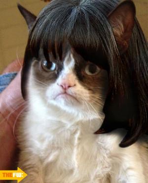 Funny Quot Grumpy Cat Meme...