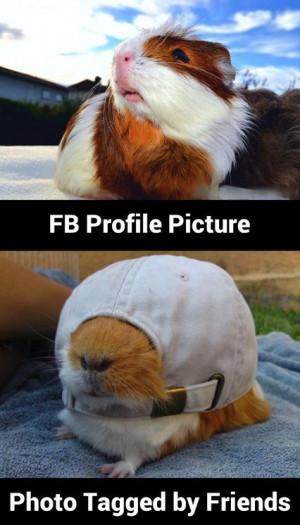 Funny FB Profile Picture MEME and LOL