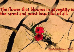 flower that blooms in adversity is the rarest and most beautiful of ...