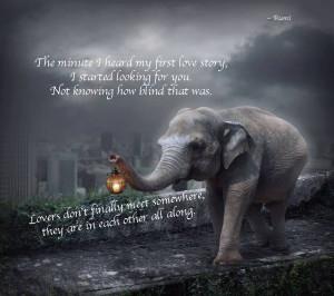elephant walklight rumi quote
