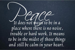 Peace, It Does Not Mean To Be In A Place Where There Is No Noise ...