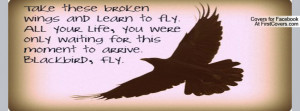Blackbird Singing The Dead