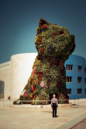 Jeff Koons: Koons Puppys, Jeff Koons, Flower Dogs, Photo, Puppys ...