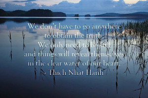 ... who doesn't have compassion cannot be happy - Thich Nhat Hanh