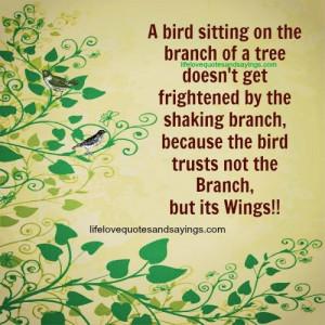 Bird Sitting On The Branch..