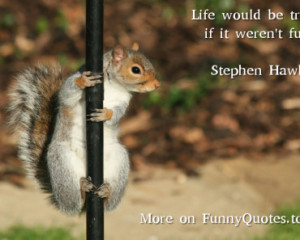 Stephen Hawking Funny Quotes