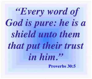 Proverbs 30.5 Bible Verse