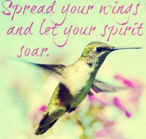 Hummingbird quotes!