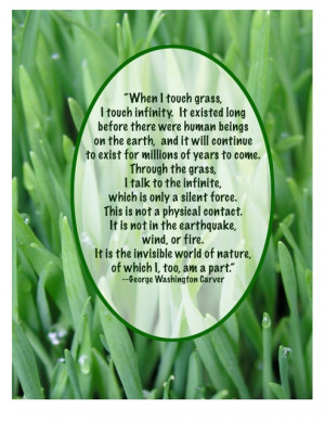 Blades Of Grass Quotes