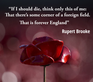 Armistice Day: These Poignant Words Remind Us Of What The Poppies ...