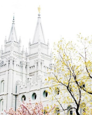 LDS Temple Pics to download - add your own quotes or names.